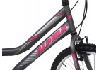 Alpina Alpha S MTB 24x12 Anthracite Ποδήλατα zeussa.gr