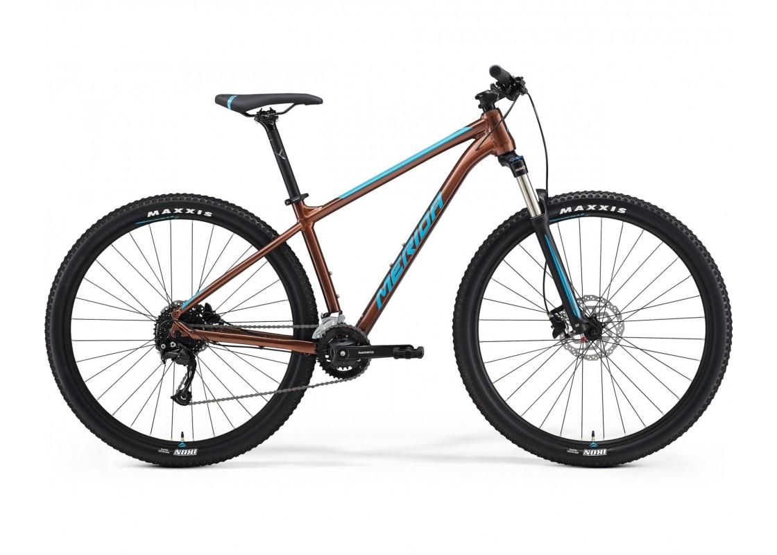 "BIG.NINE 100-2x Μπρονζέ-Μπλε 29"" 18.5L Ποδήλατα zeussa.gr"