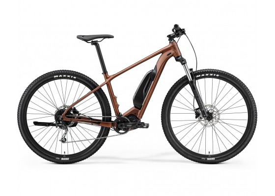 eBIG.NINE 300 SE MATT BRONZE